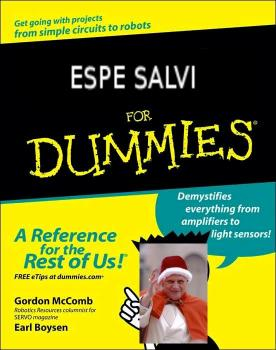 Spe salvi for dummies